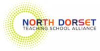 NDTSA Logo